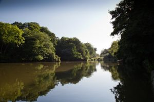 Gyrn Castle lakes